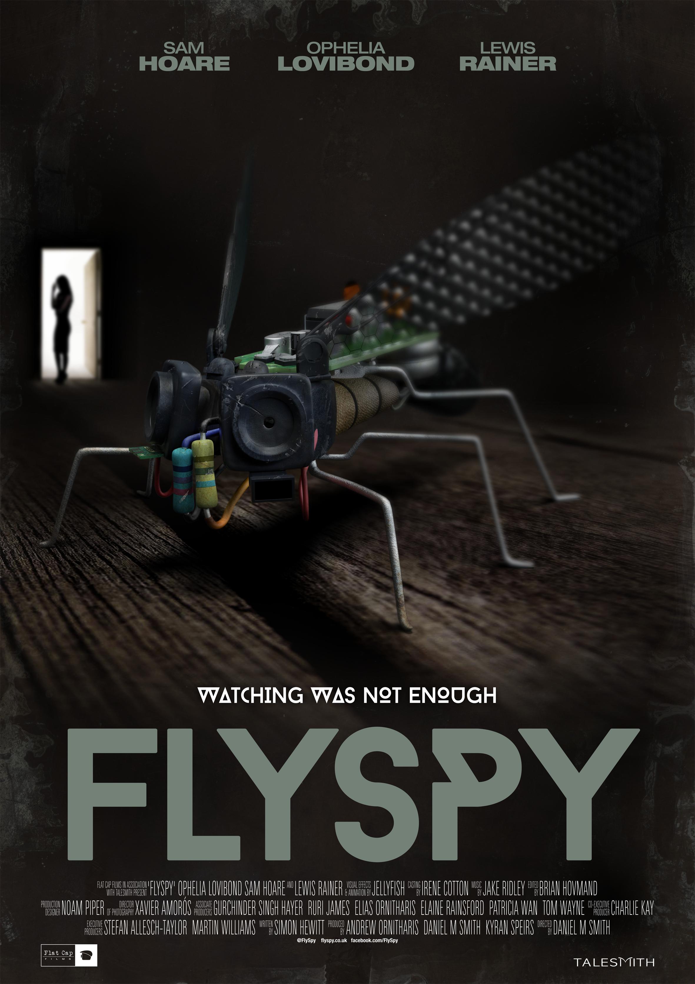 Flyspy_small poster